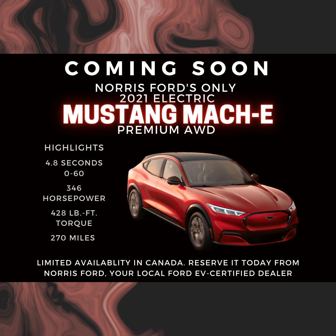 Pre order Mustang MachE