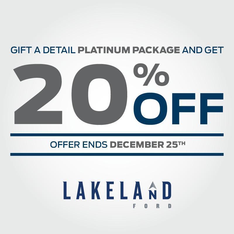 Platinum Detail Christmas Discount