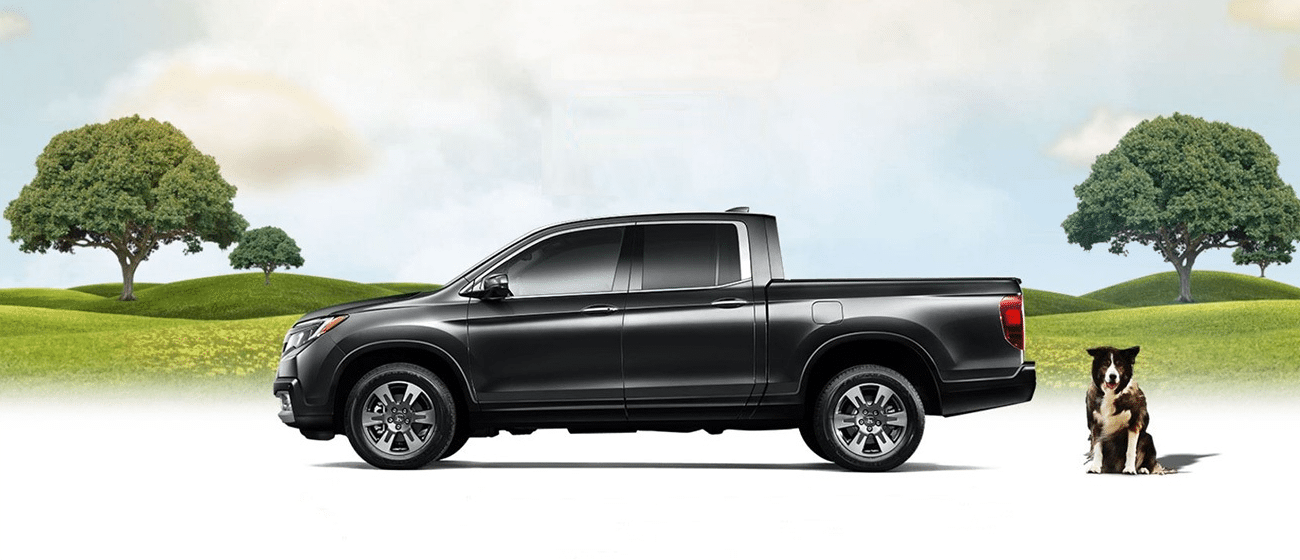 2017 Ridgeline image with dog
