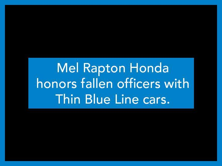 Thin Blue Line Cars