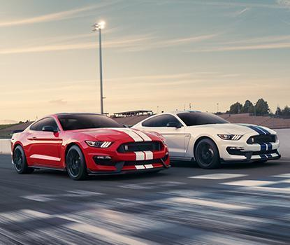 Ford Ford Performance Vehicles image