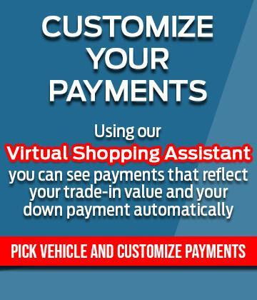 Customize Your Payment