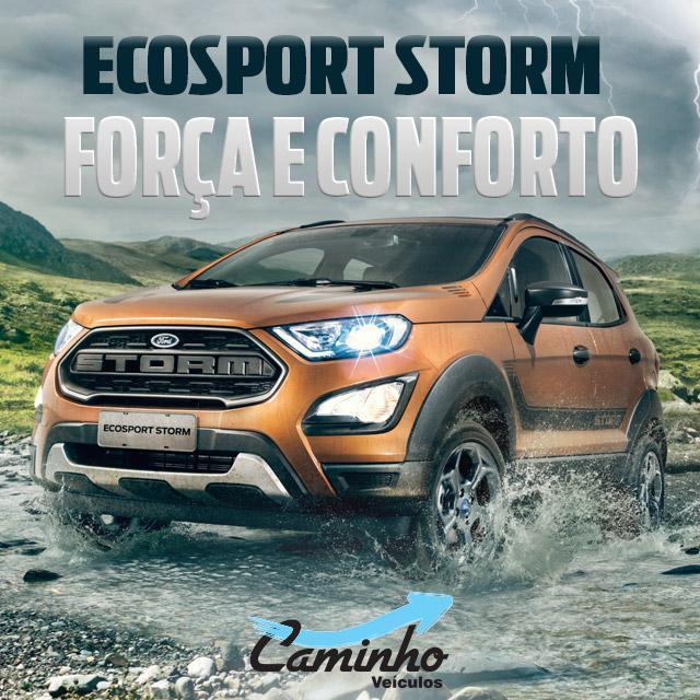 Ecosport Storm