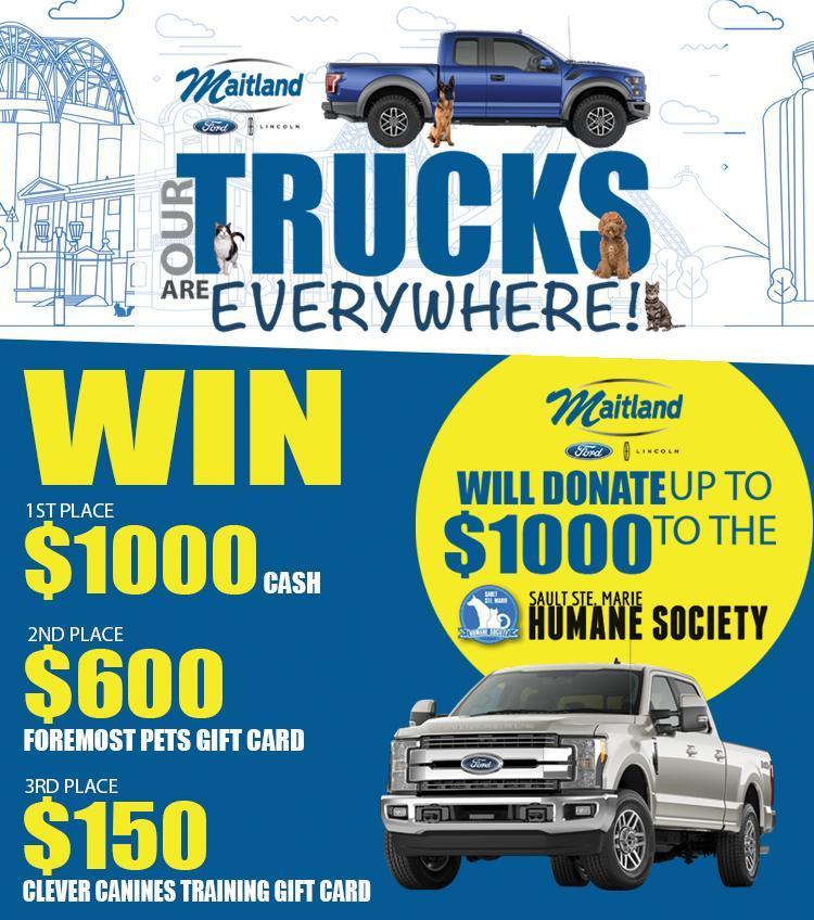 Maitland Ford offer