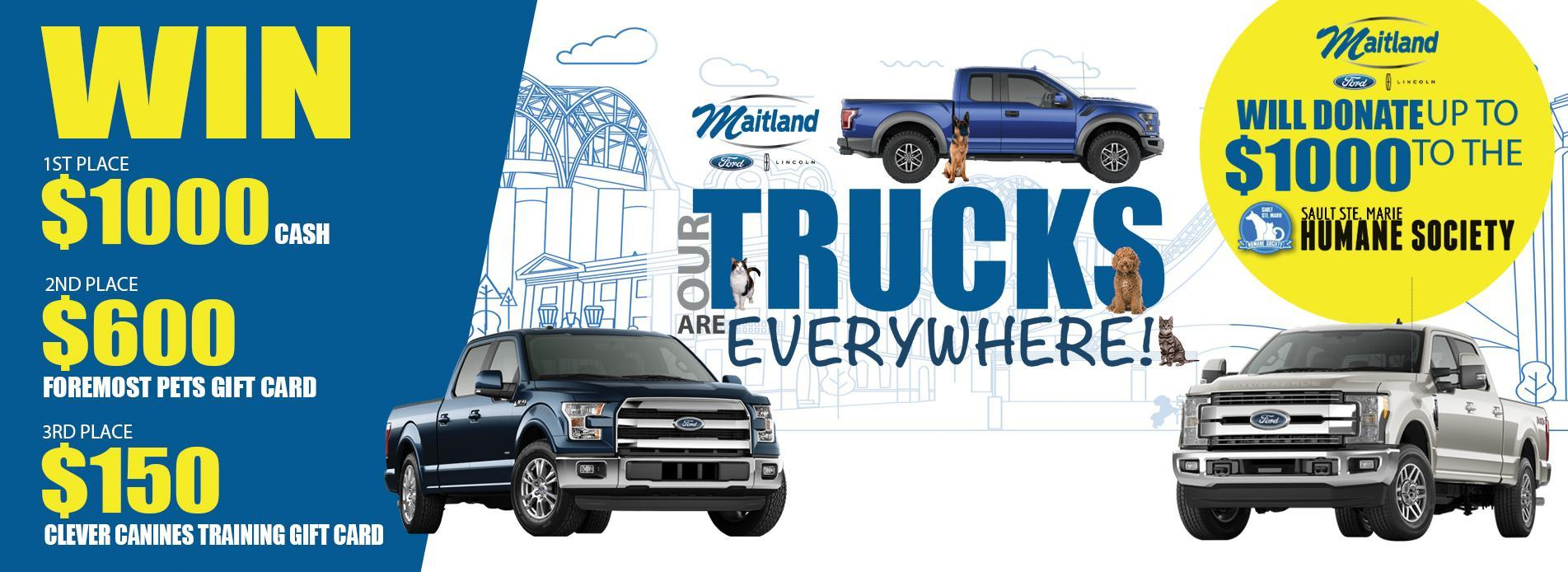 Maitland Ford Contest