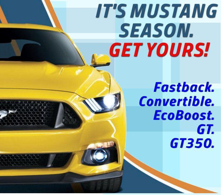 It's Mustang season