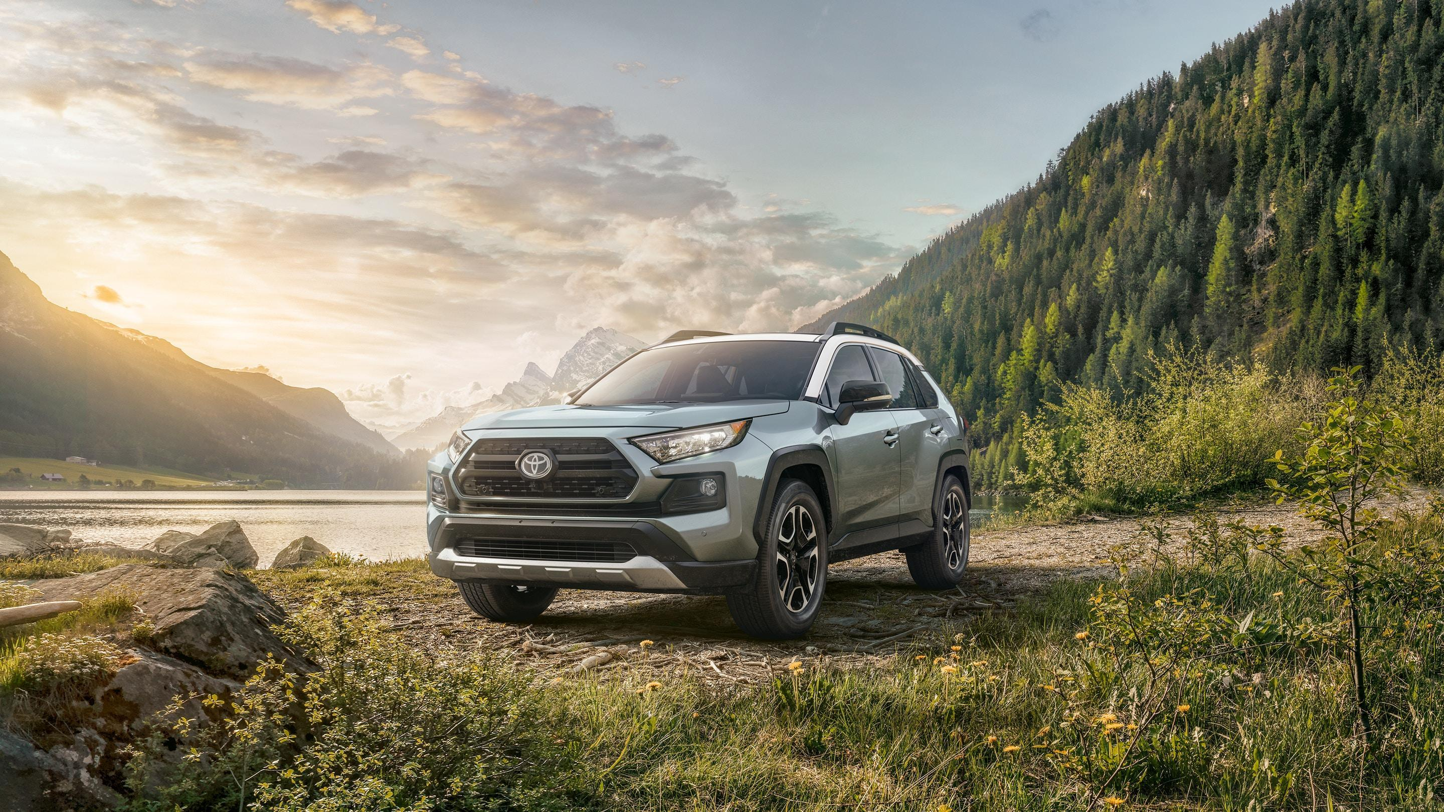 2019 Toyota RAV4 for Sale in Ft. Collins