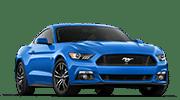 Mustang