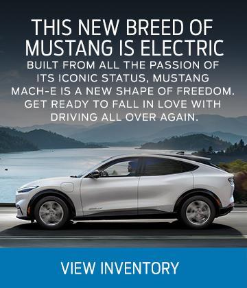 Mustang Mache E