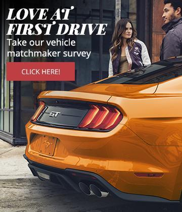 Vehicle matchmaker survey