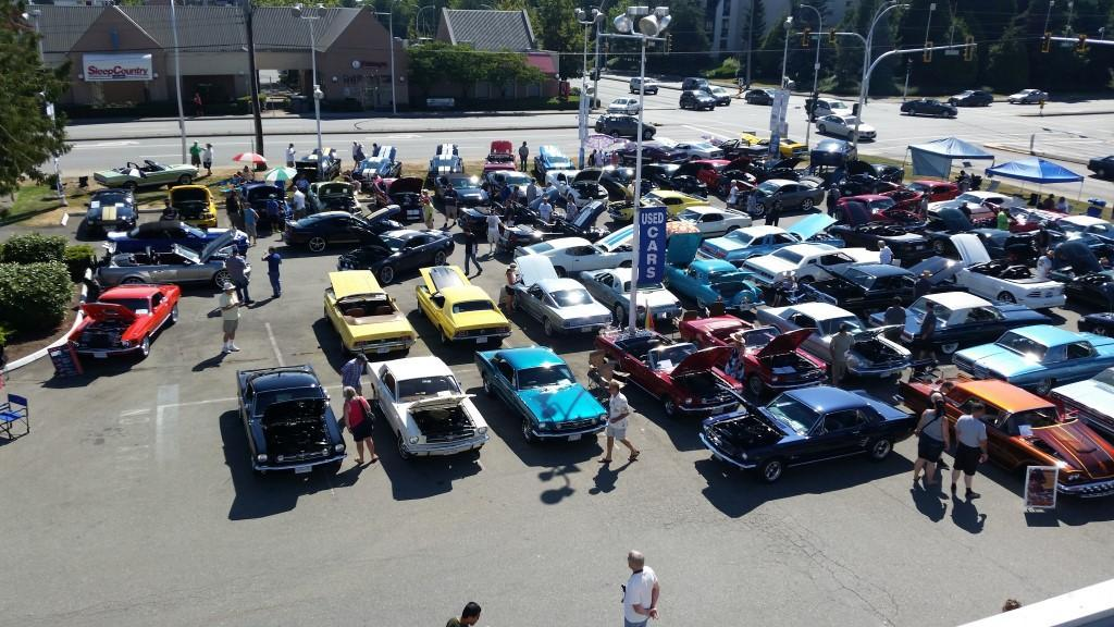 Ford Shelby Show PIctures image