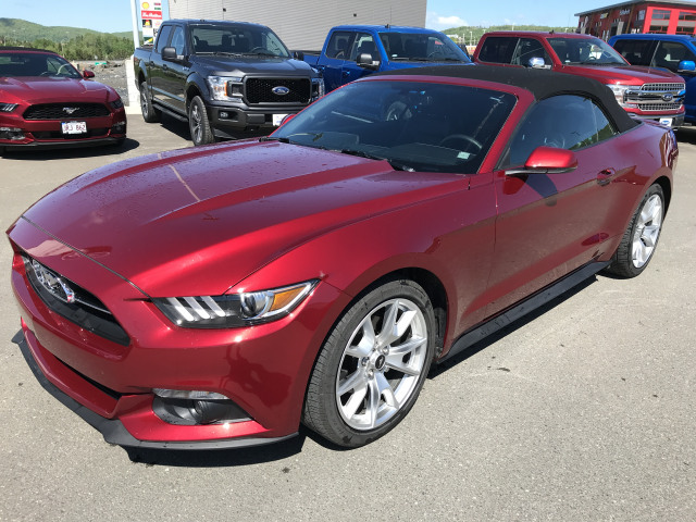2015 FORD MUSTANG PREMIUM 50TH ANNIVERSARY CONVERTIBLE