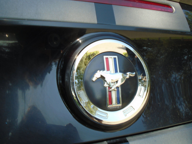 2014 Ford Mustang Convertable  V6 Premium