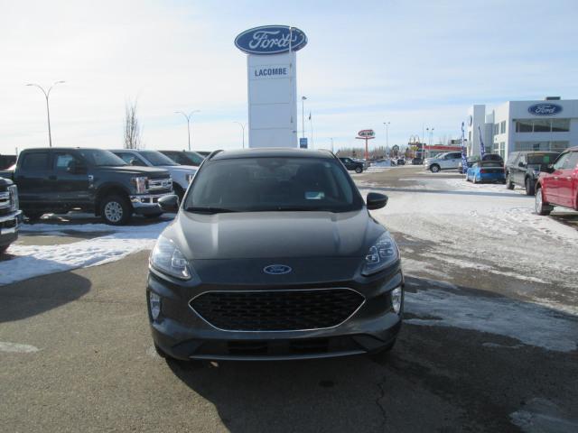 2020 Ford Escape Hybrid Titanium