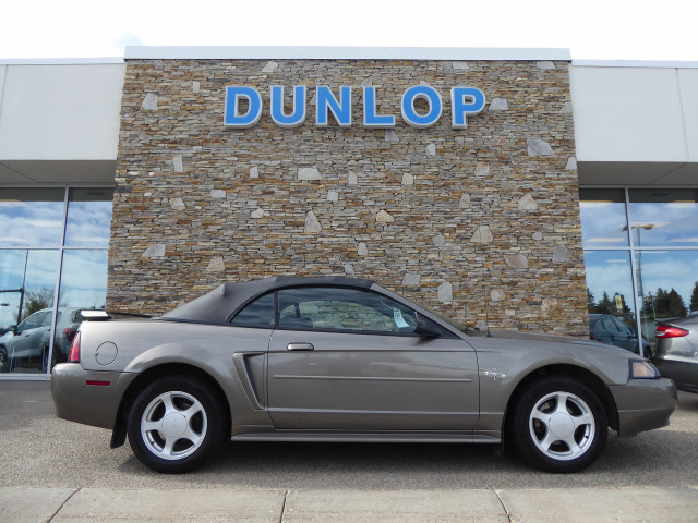 2002 Ford Mustang Base RWD w/ 3.8L V6 Engine